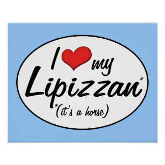 It's a Horse! I Love My Lipizzan Poster