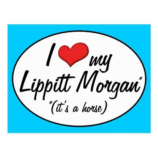 It's a Horse! I Love My Lippitt Morgan Post Card