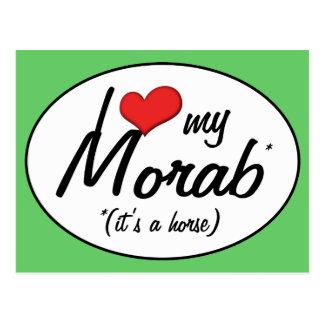 It's a Horse! I Love My Morab Postcard