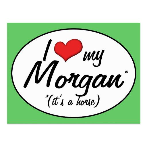 It's a Horse! I Love My Morgan Postcards