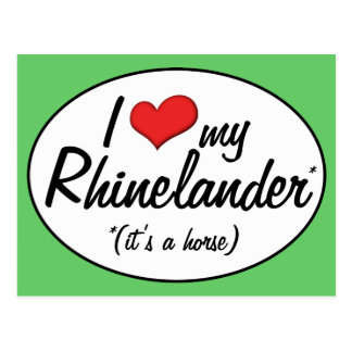 It's a Horse! I Love My Rhinelander Postcard