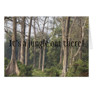 It's a jungle out there! greeting card