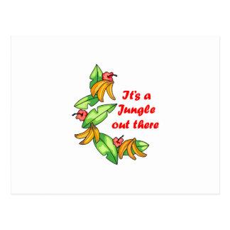 Its a Jungle... Post Card