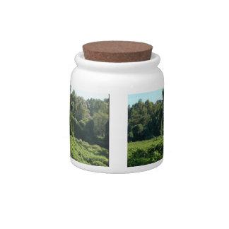 Its A Kudzu World After All Jar Candy Dishes