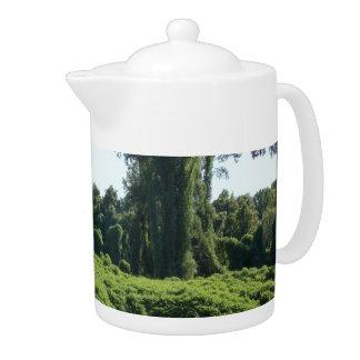 Its A Kudzu World After All Teapot
