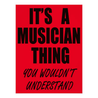 It's A Musician Thing Poster