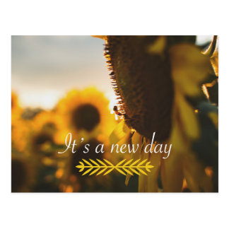 It's a New Day Postcard