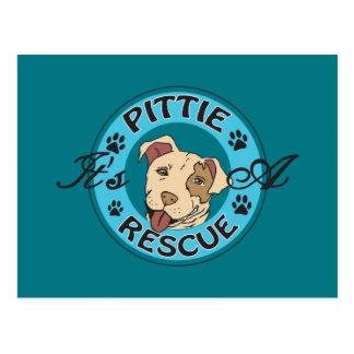 It's A Pittie Postcard