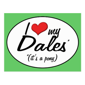 It's a Pony! I Love My Dales Post Cards