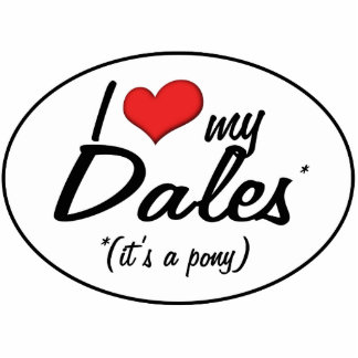 It's a Pony! I Love My Dales Statuette
