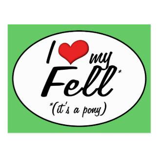 It's a Pony! I Love My Fell Postcard