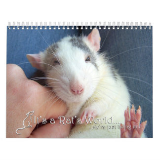 It's a Rat World Calendar 2015