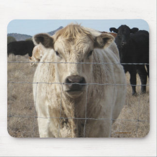 It's a Roundup! Black & White Cow Herd - Charolais Mouse Pad
