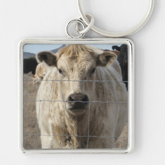 It's a Roundup! Black & White Cow Herd - Charolais Silver-Colored Square Keychain
