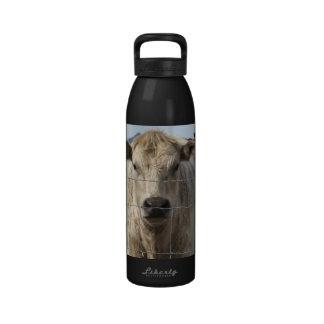 It's a Roundup! Black & White Cow Herd - Charolais Reusable Water Bottles