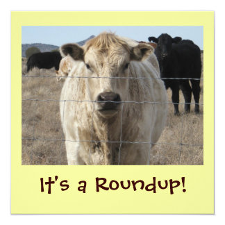 It's a Roundup! Cattle Drive Celebration 5.25x5.25 Square Paper Invitation Card