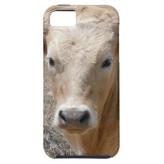 It's a Roundup! White Charolais Cattle Cow Face iPhone SE/5/5s Case