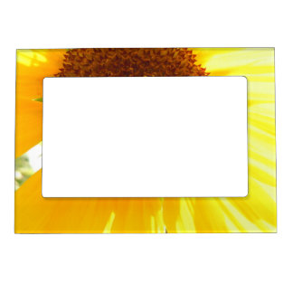 Its A Sunflower World Magnetic Photo Frame
