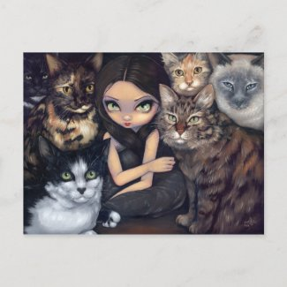 """It's All About the Cats"" Postcard"