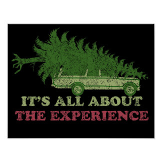 It's All About The Experience Poster