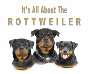About Rottweiler Accessories Zazzle