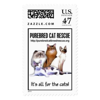 It's all for the Cats! Stamp