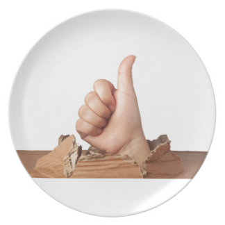 It's all good party plate