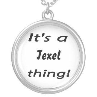 It's aTexel thing! Silver Plated Necklace