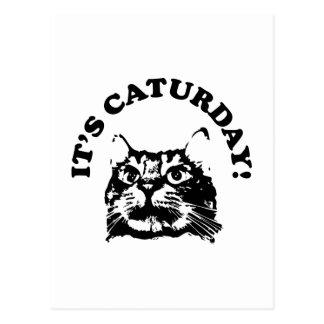 It's Caturday Postcard