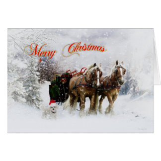 It's Christmas Greeting Card