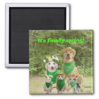 It's finally spring! 2 inch square magnet