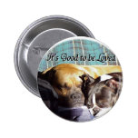 It's Good to be Loved Pinback Buttons