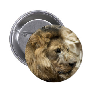 It's Good To Be The King Pinback Button