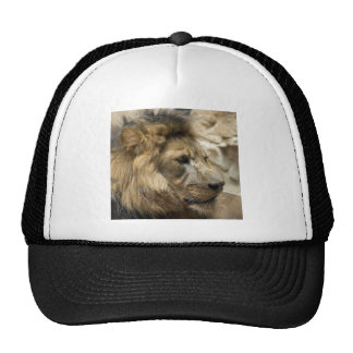 It's Good To Be The King Trucker Hat