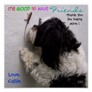 It's Good to Have Friends Poster