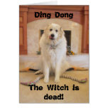 It's Halloween! The wicked witch is dead! Card