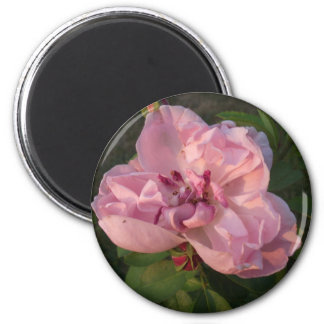 Its Heaven On Earth! 2 Inch Round Magnet