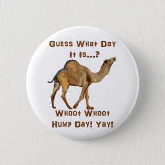 Its Hump Day Pinback Button