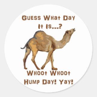Its Hump Day Round Sticker