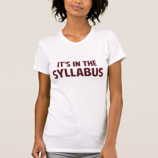 It's In The Syllabus Tee Shirt