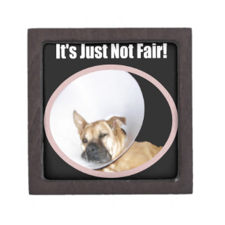 It's Just Not Fair! Dog Gift Box