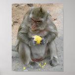 It's Mine!! ... Thai Monkey Poster