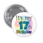It's my 17th Birthday Pins
