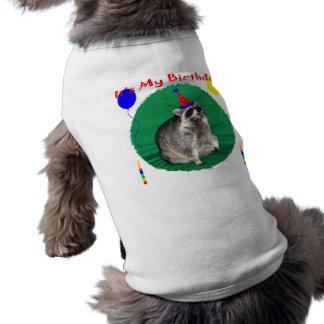 It's My Birthday Pet Clothing
