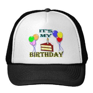 It's My Birthday with Cake Birthday Hat