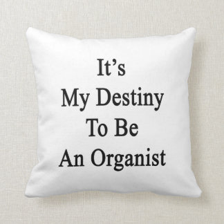 It's My Destiny To Be An Organist Throw Pillows