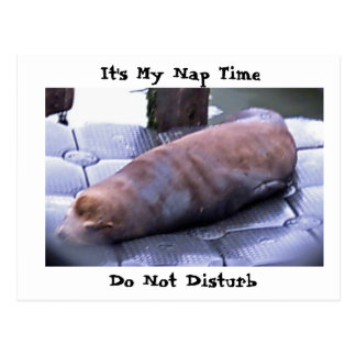 It's My Nap Time, Do Not Disturb Post Card