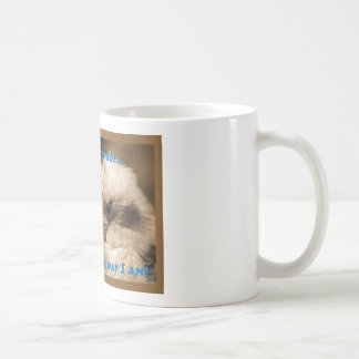 It's Not An Attitude! Coffee Mug