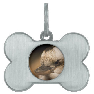 It's NOT An Attitude Pet Tags