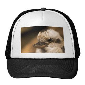 It's NOT An Attitude Trucker Hat